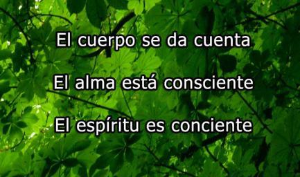 darse_cuenta_consciente_conciente